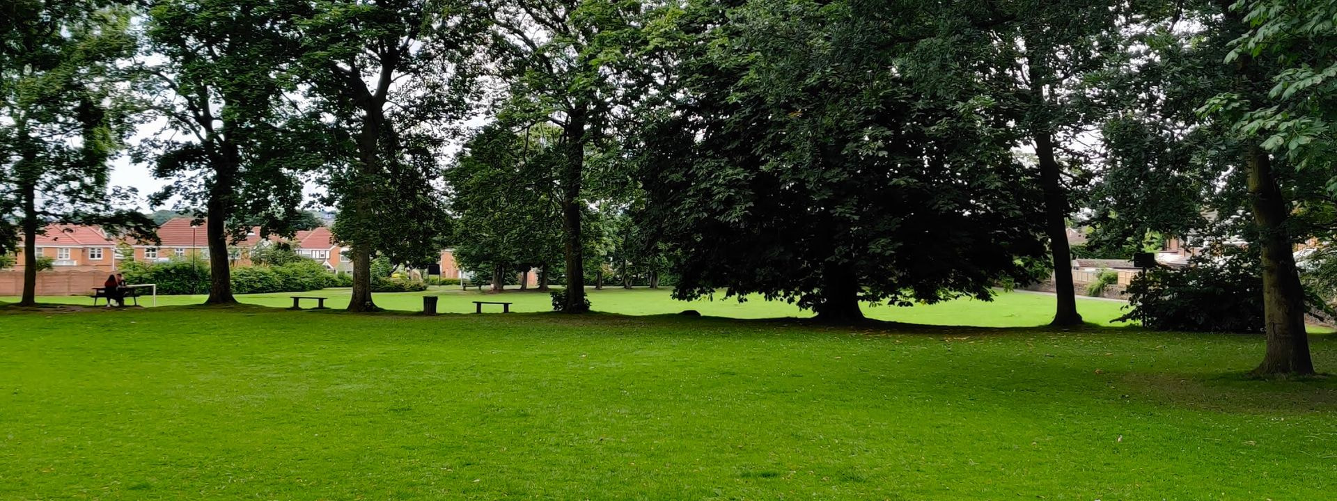 Westroyd Park field and trees