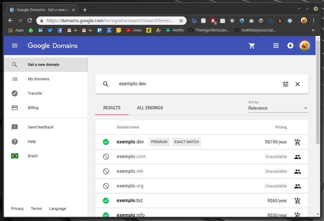 Exemplo de pesquisa no Google Domains
