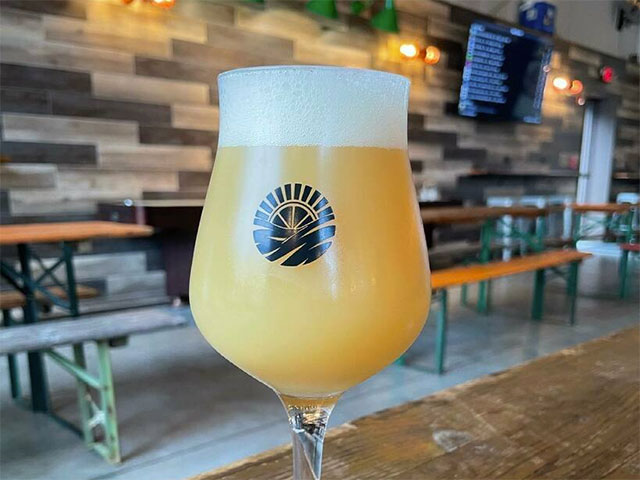 A gorgeous pour of beer into a gorgeous beer glass