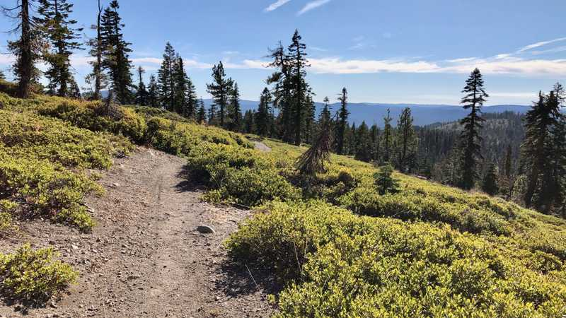 A clear view as the PCT goes over a ridge