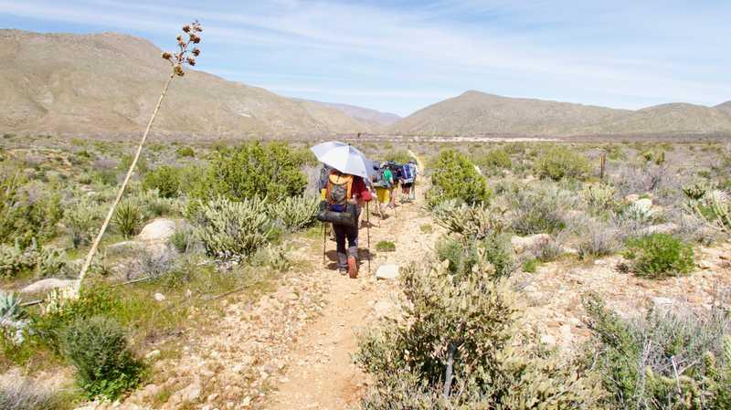 Tramily walking in the desert