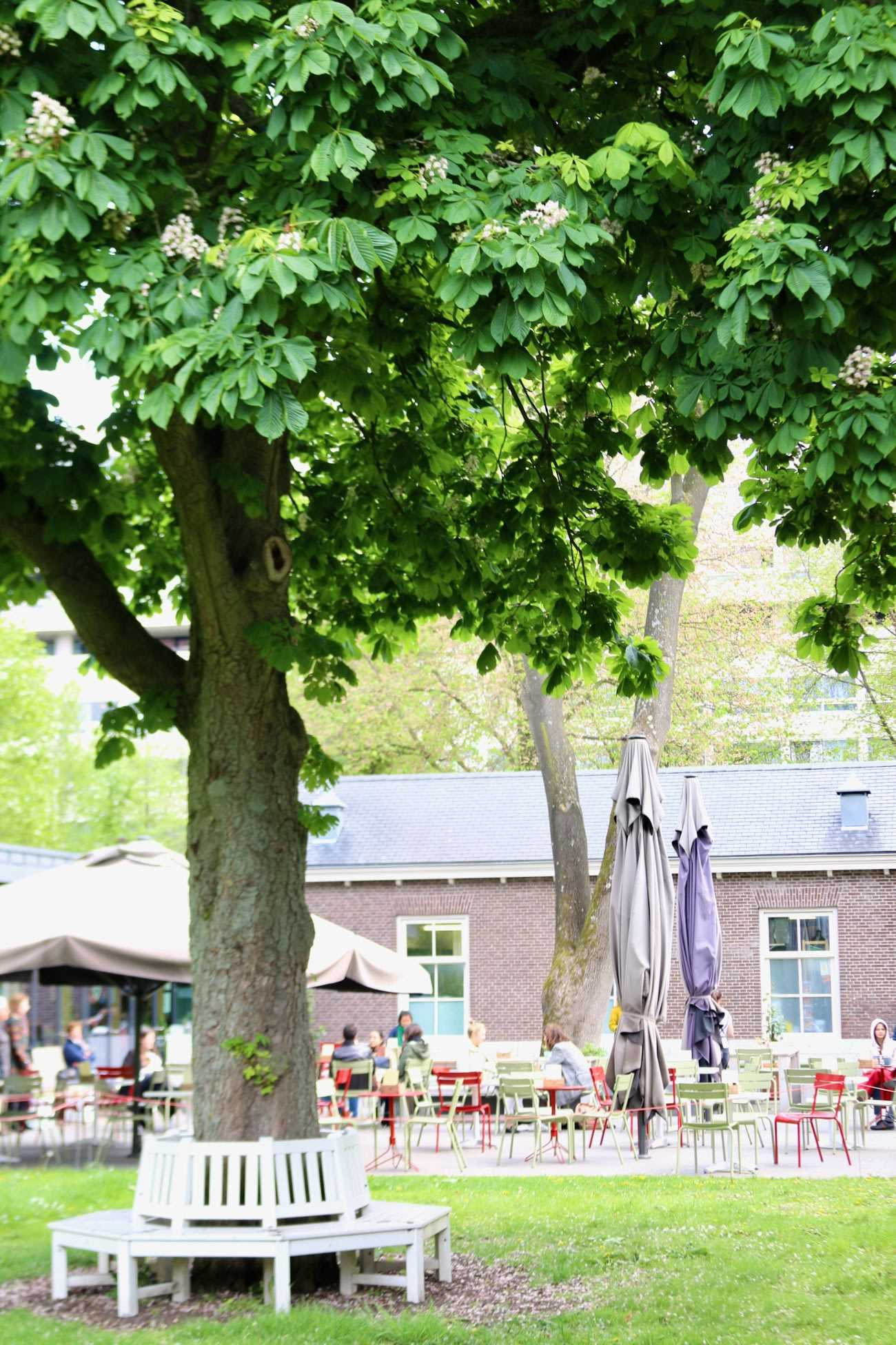 Beautiful park in Amsterdam is setting for brunch restaurant Dignita's outdoor dining area
