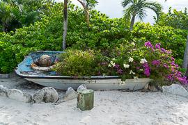 Half Moon Cay, Little San Salvador Island, Bahamas