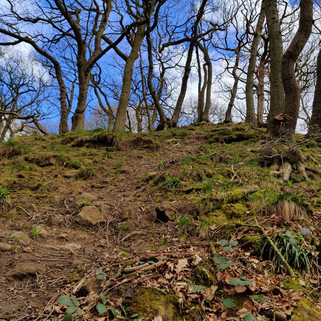Path up hill at Hetchell Wood Leeds