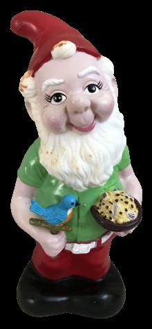 Gnome with Bird photo