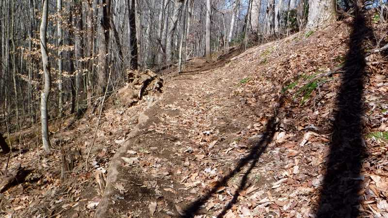 Recent trail work