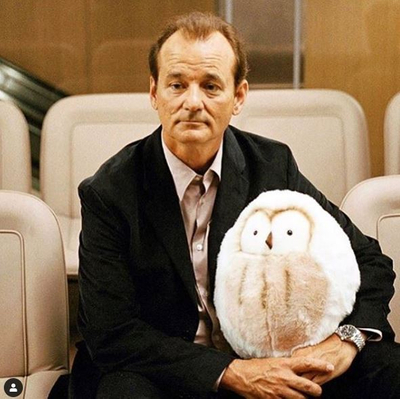 featured image thumbnail for post Bill Murray Net Worth and Life Story (Updated 2020) How much is Bill Murray Worth?