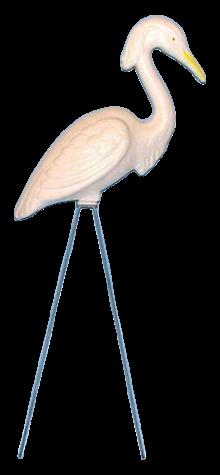 Egret photo