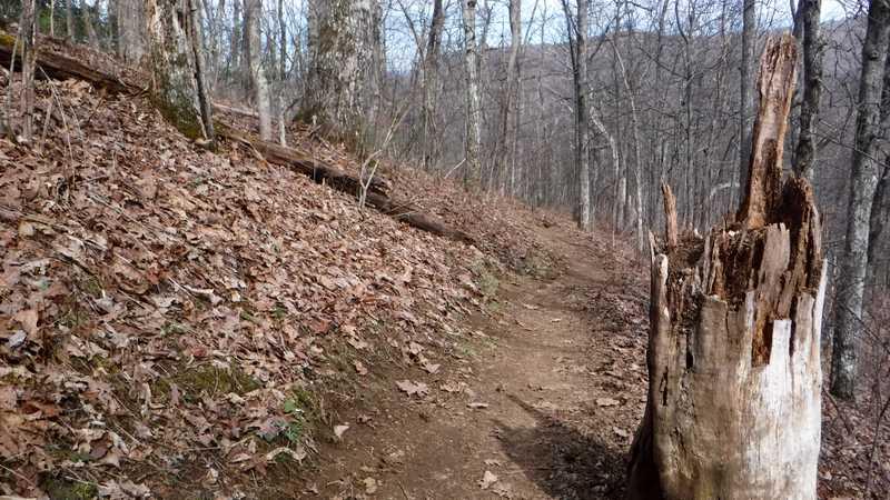Descending Tray Mountain