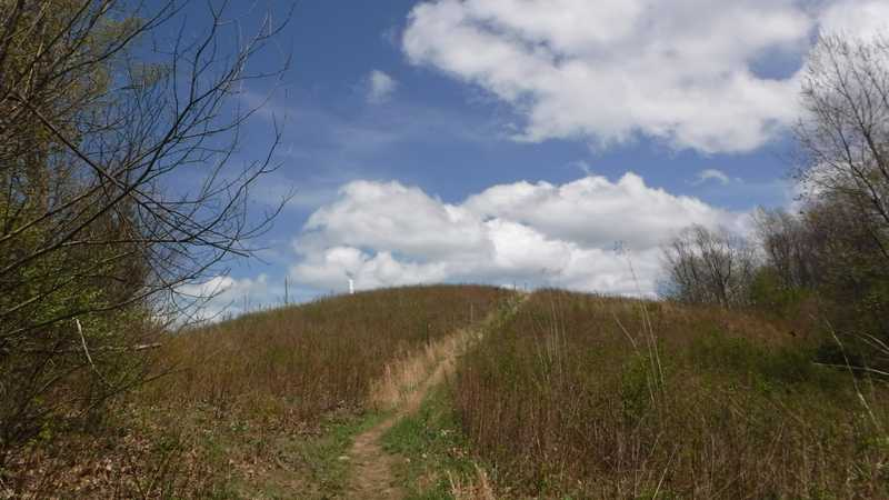 Summit of Snowbird Mountain