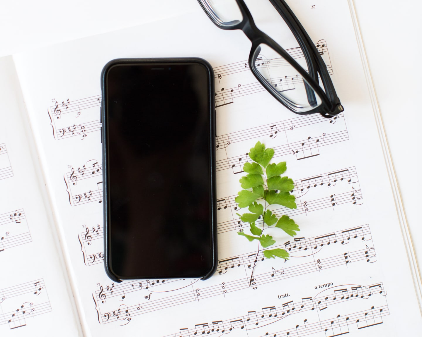 Flat lay of Jack Watkins iPhone, sheet music, glasses and plants