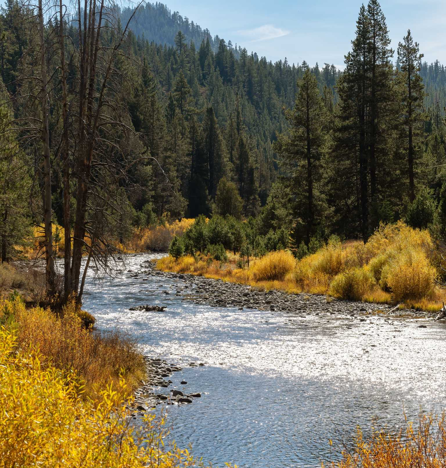 Since the first grant in 2006 more than $14 million in grants has flowed through the Truckee River Fund to protect and enhance the water quality and the water resources of the Truckee River.