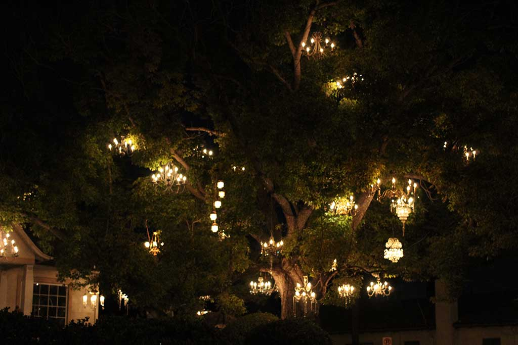 tree with chandeliers