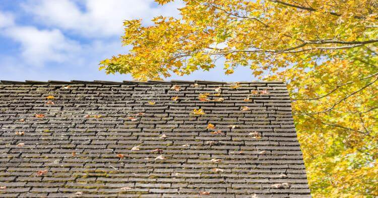 Improve Roof Life