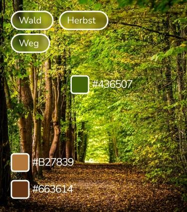 Die Abbildung zeigt die Detailansicht für die Metadaten eines digitalen Assets
