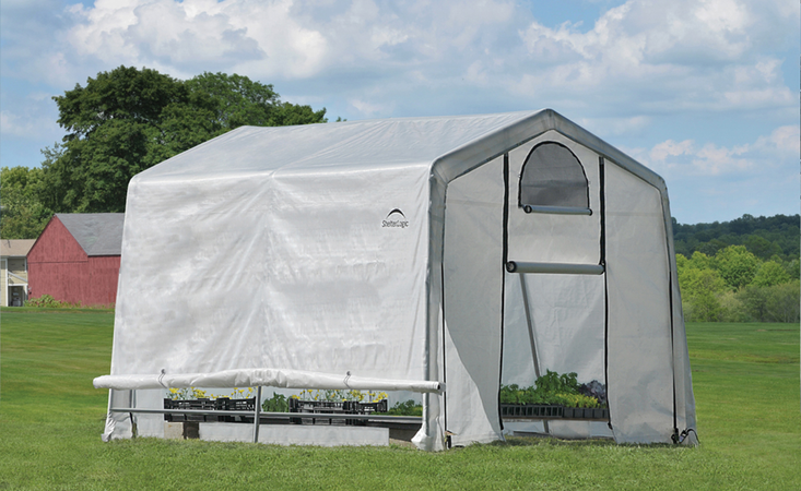 10 foot background greenhouse