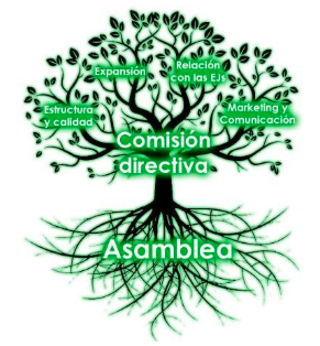 Raíces' organizational structure