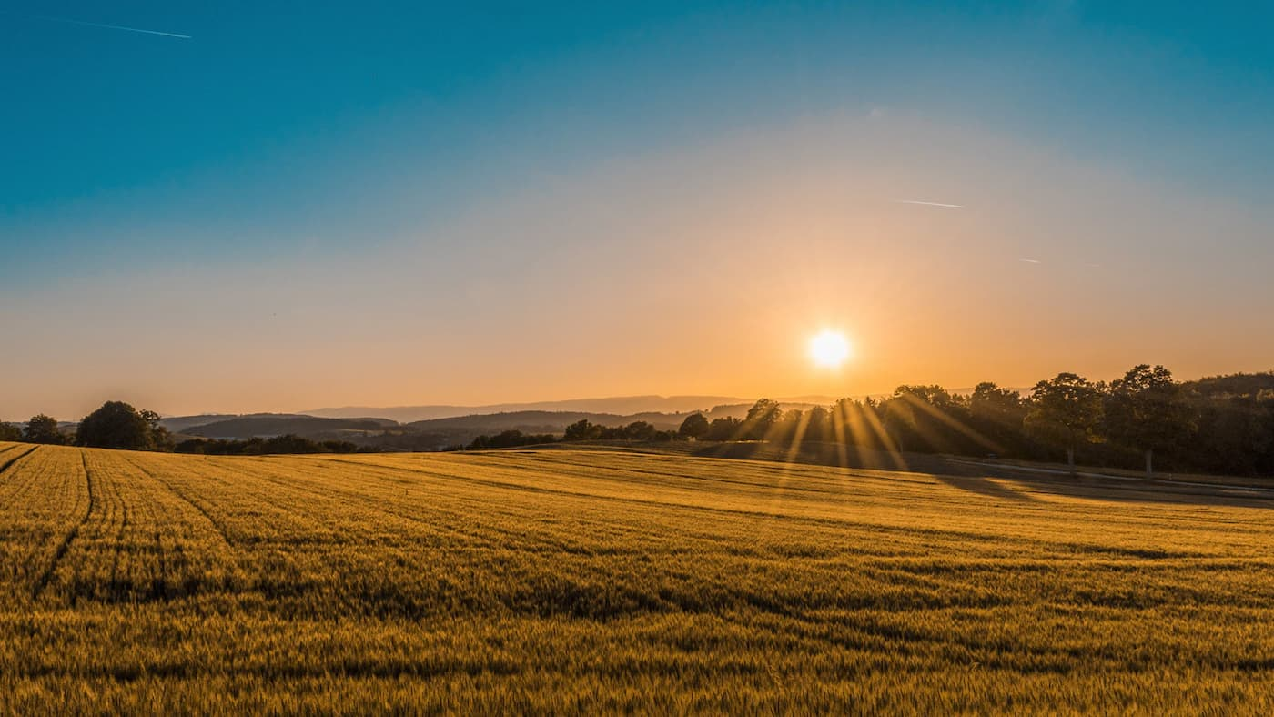 A sunrise marking a new dawn