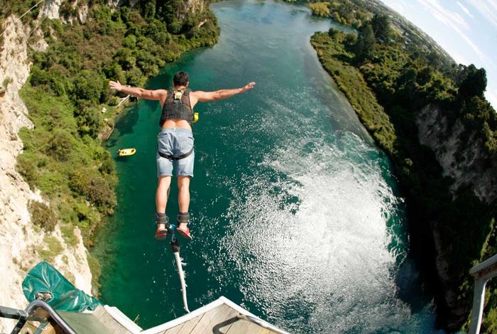 Bungy & Cliffhanger