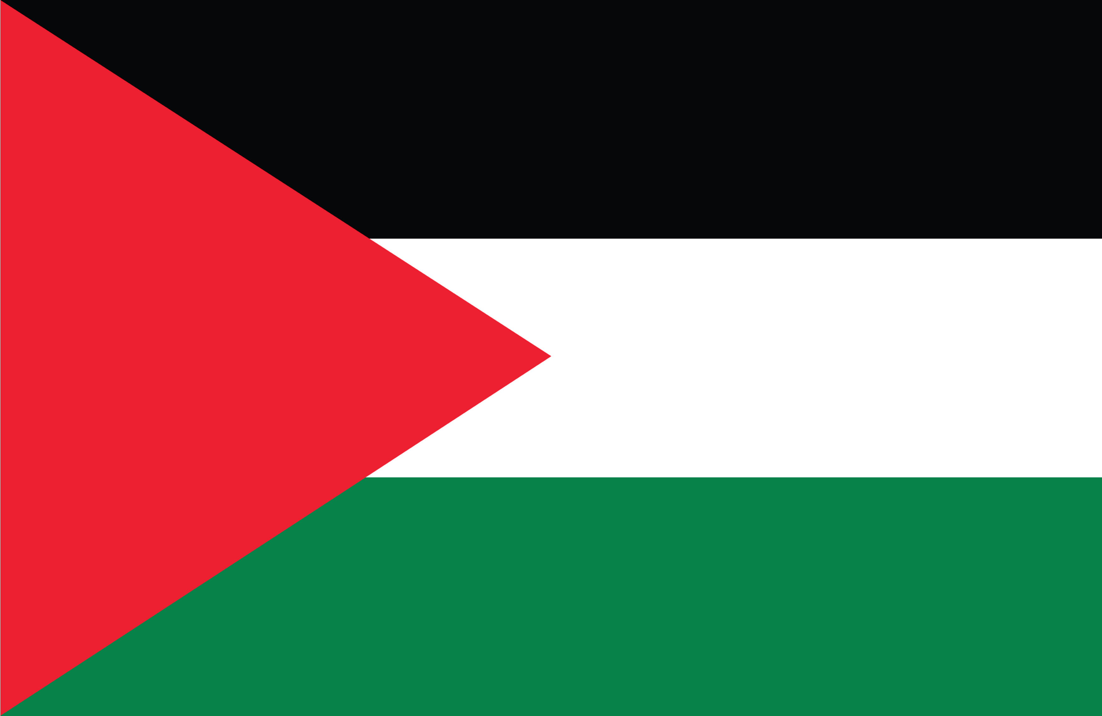 Flag of Palestinian Territory