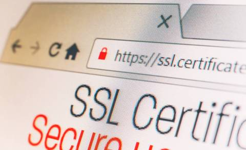 Did you already adjust your dealer website to ssl?