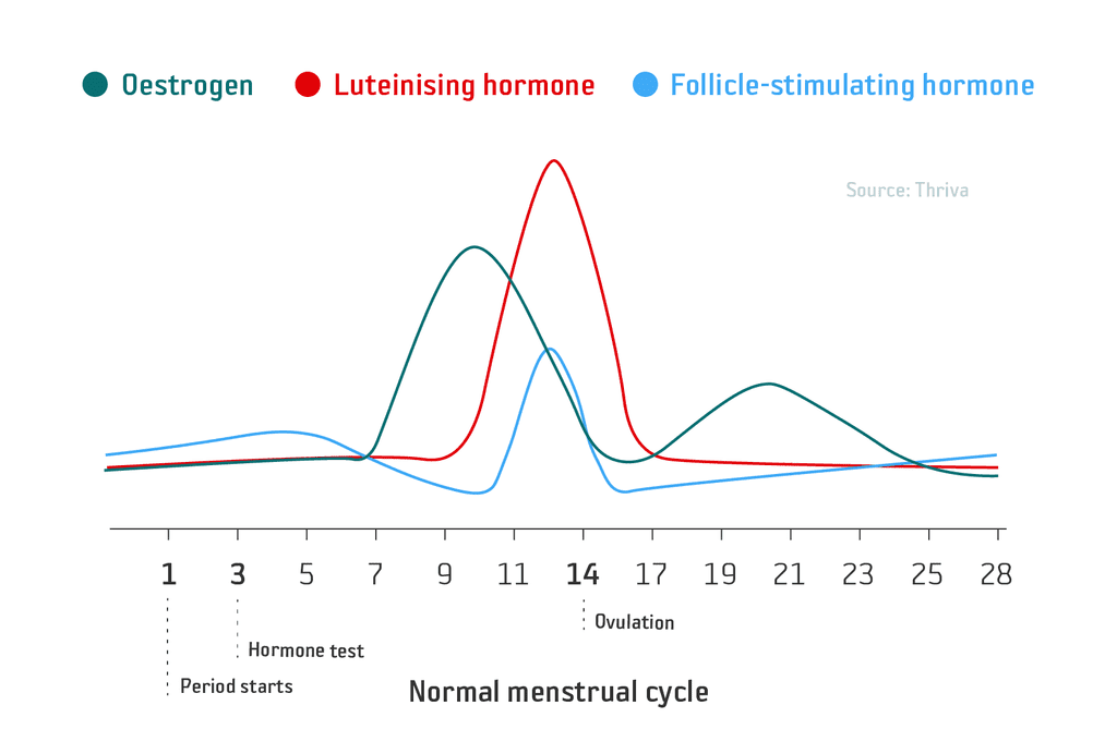 Menstrual hormone disbalance blood test