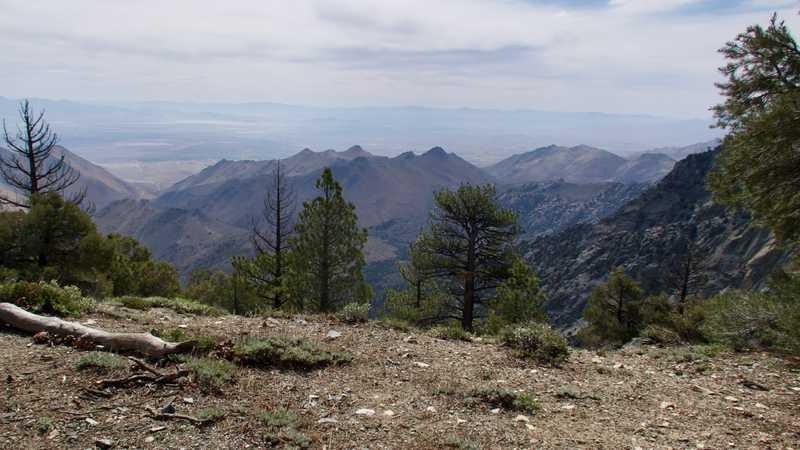 View of Mojave Desert