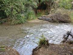River crossing - wet feet