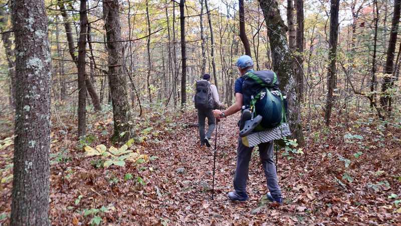 JA and Tengo continue walking on the Benton MacKaye Trail