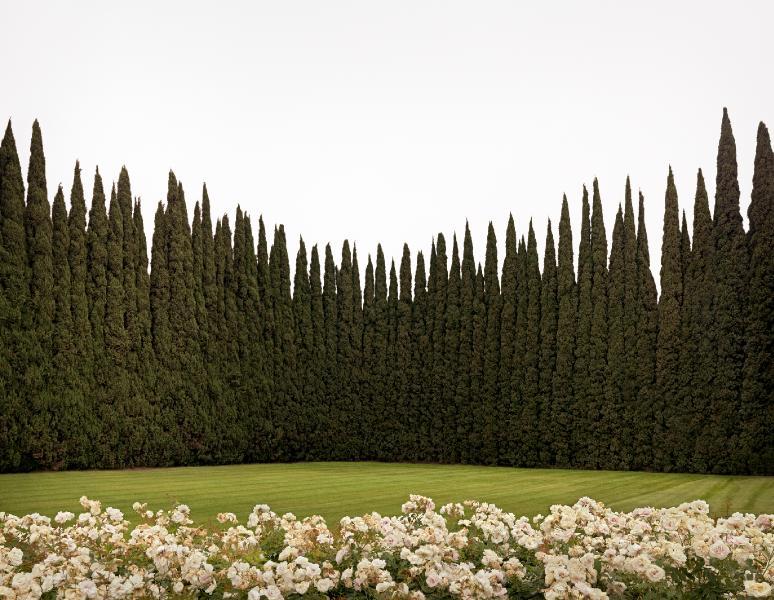 Judith Circle, Westminster, California