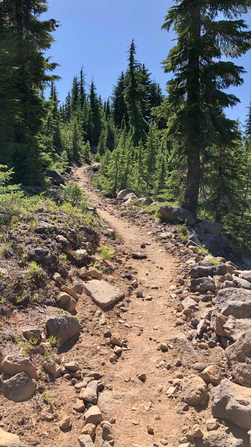 Zig-zagging trail