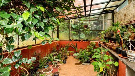Glass House Nursery
