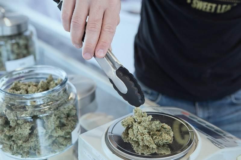 Where to Find Cannabis Jobs in Australia