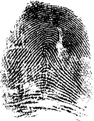Fingerprints as Detectives by
