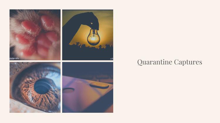 Quarantine Captures