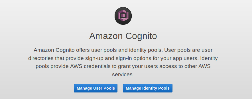 AWS Cognito User or Identity Pools