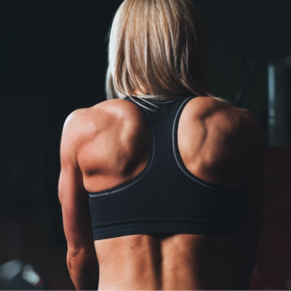 At Home Workouts for Back