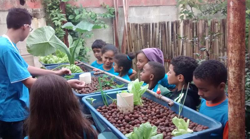 Imagem em destaque para o artigo: Educação ambiental em escola da capital mineira é um exemplo a ser seguido