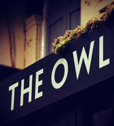 The Owl food