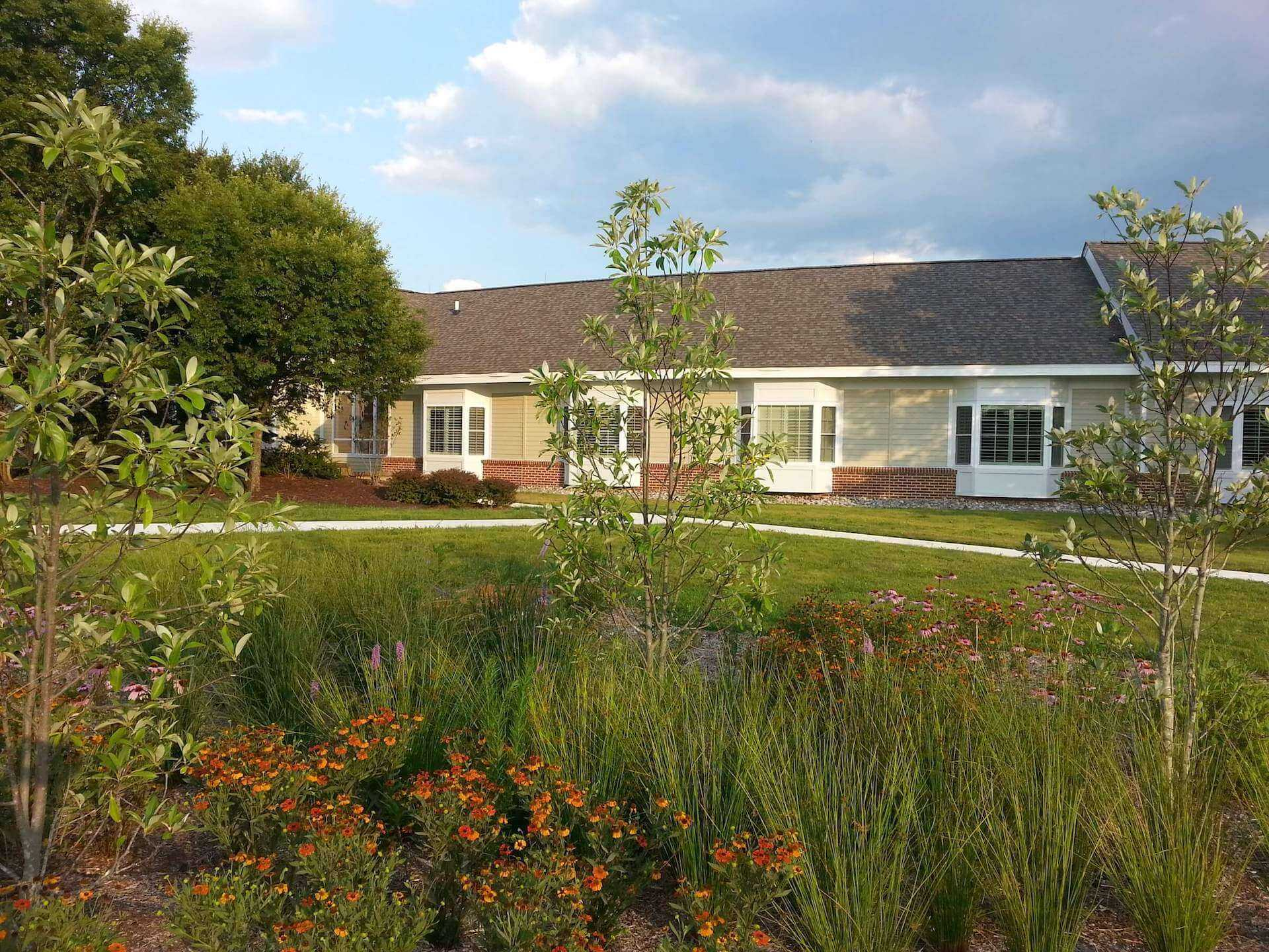 somerford building beyond the landscaping