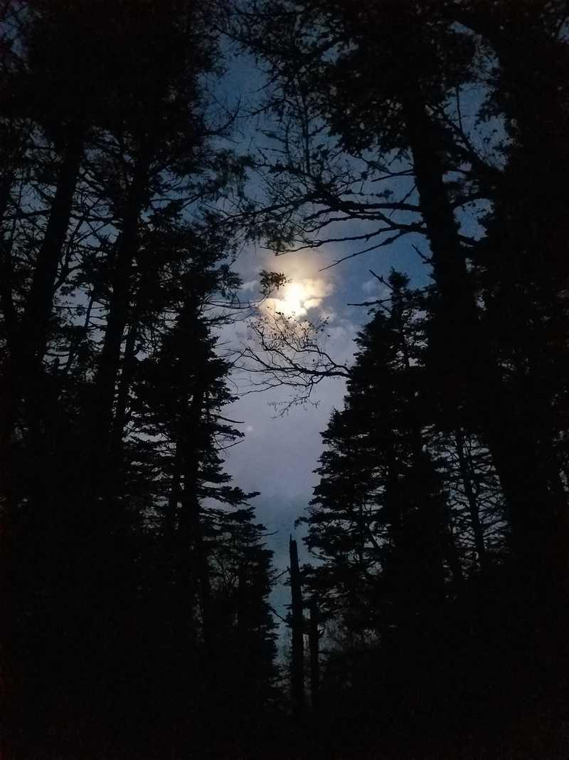 Moon over Zeta Gap