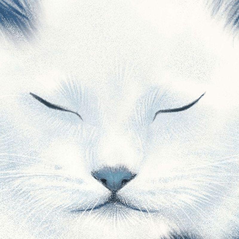 Фрагмент обложки книги Антонины Малышевой «Кот забвения»