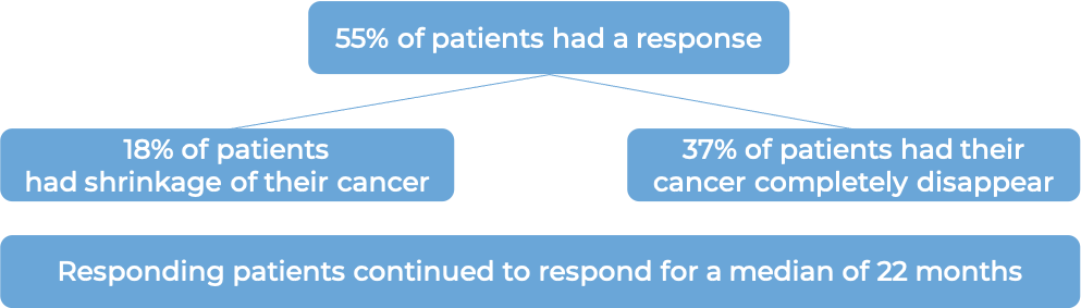 Results after treatment with Monjuvi (diagram)
