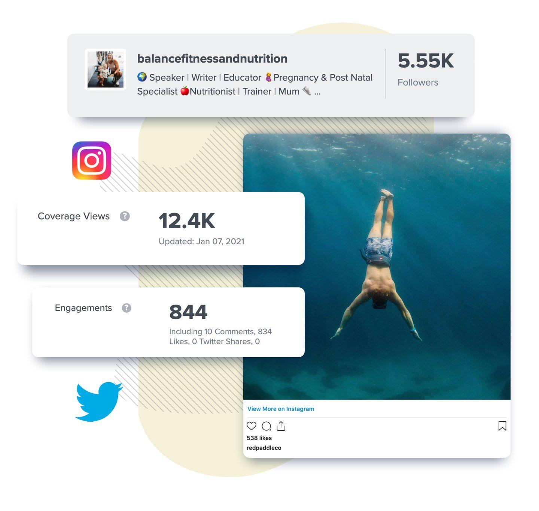 twitter and instagram metrics