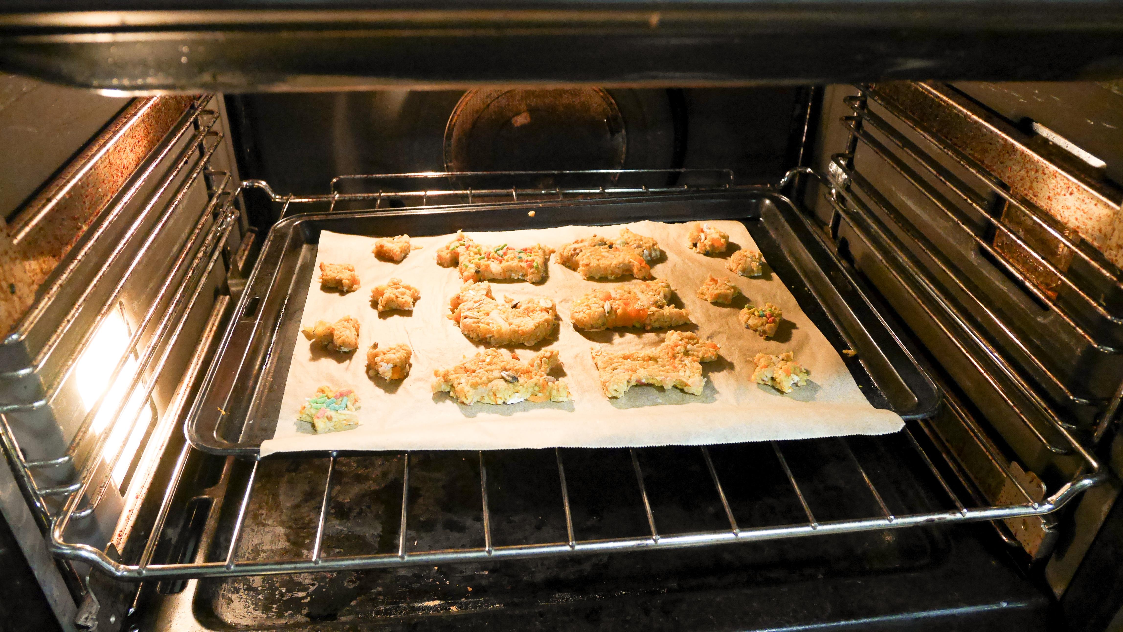 Parrot cookies baking in the oven