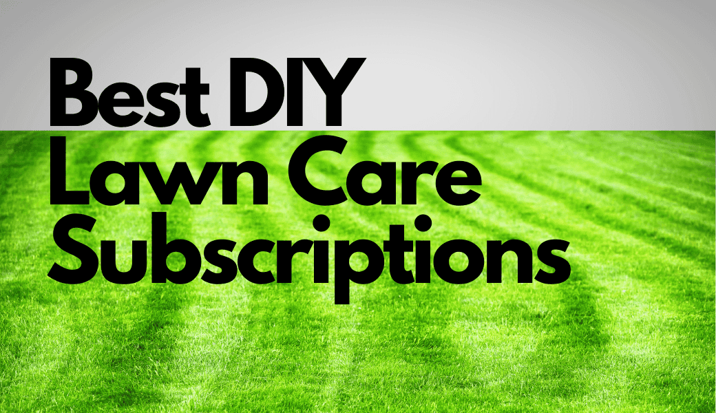 Best DIY Lawn Care Subscriptions:, Sunday, Rachio Thrive, Lawn Serv,, Lawnbright and Scotts Annual Program cover image