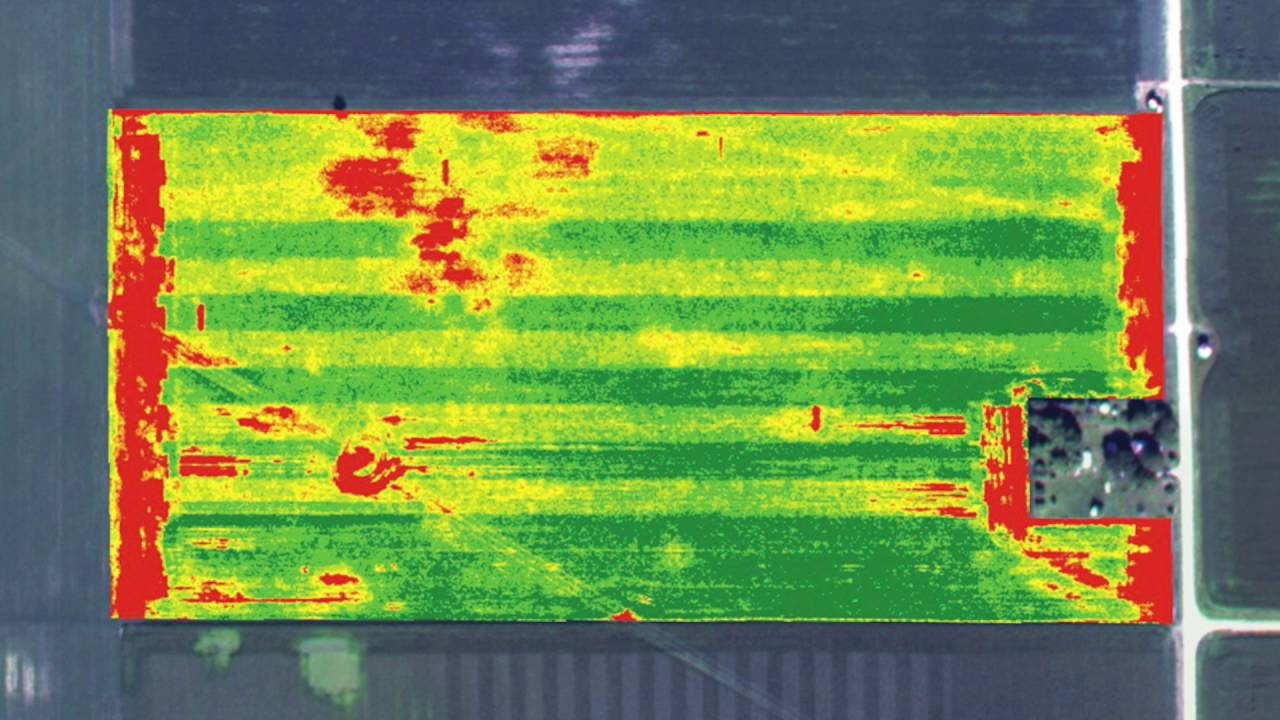 Field Soil Analysis