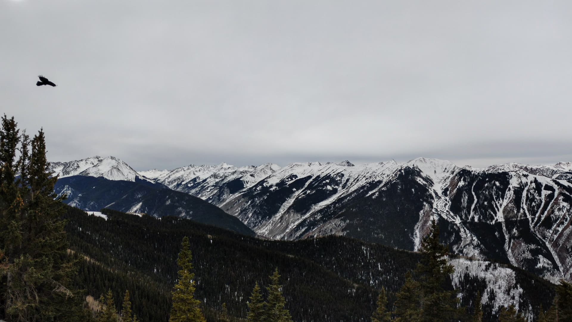 Snow-capped mountains border a steep valley. The winter sky is cold and gray. On the right, a crow takes flight.
