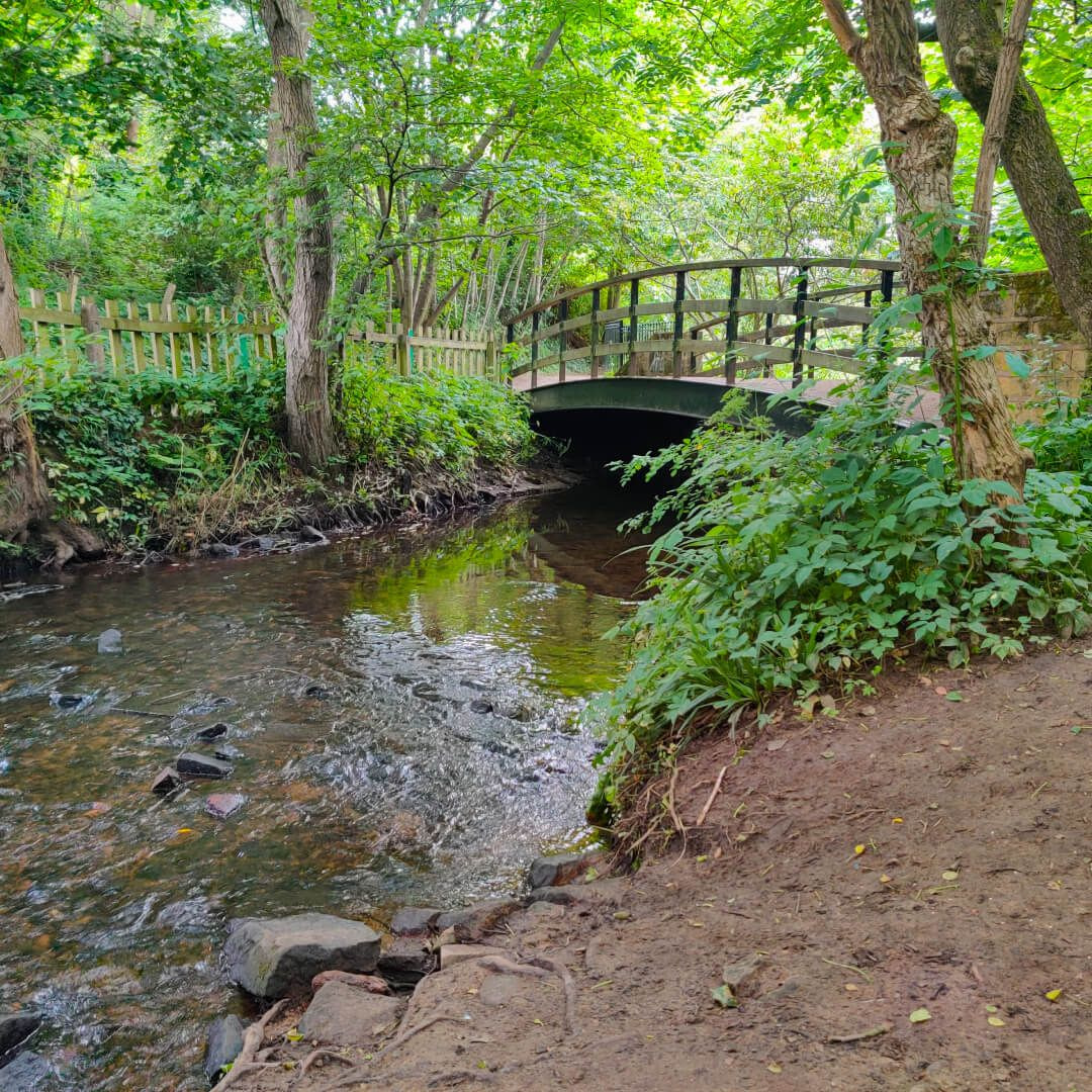 Meanwood Valley Local Nature Reserve bridge over beck