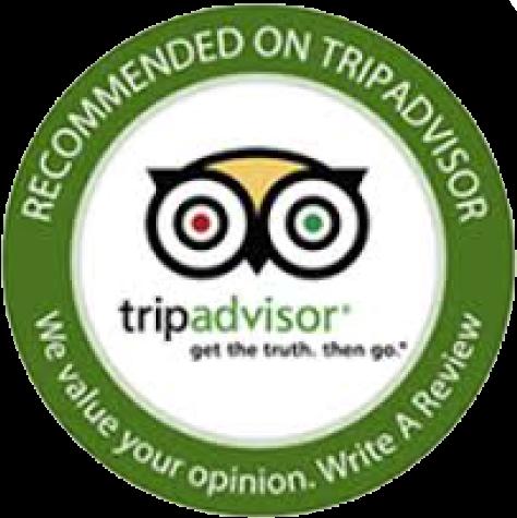 reviews trip advisor